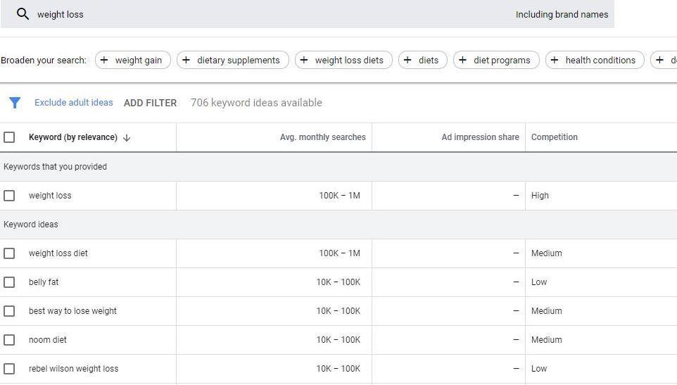 Google-Keyword-Planner-Example